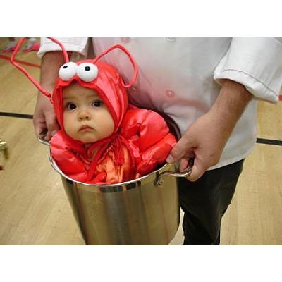 baby-lobster-costume.jpg
