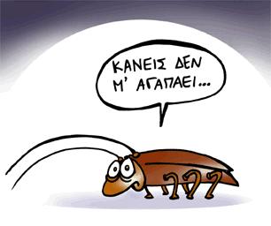 14 πράγματα που δεν ξέρατε για τις κατσαρίδες!