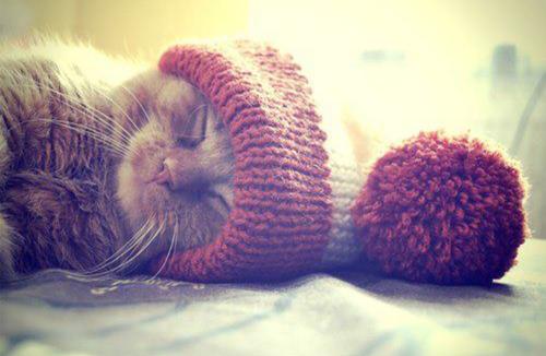 «Πώς να είναι το σπίτι μου πιο ζεστό χωρίςκαλοριφέρ;»