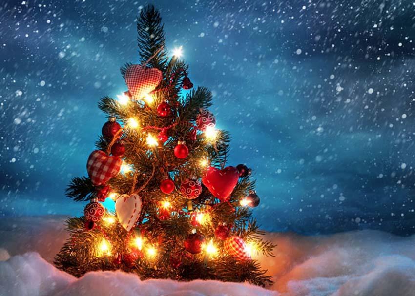 Xmas Κουίζ: Τι λέει το Χριστουγεννιάτικο Δέντρο σας για τον Χαρακτήρασας;