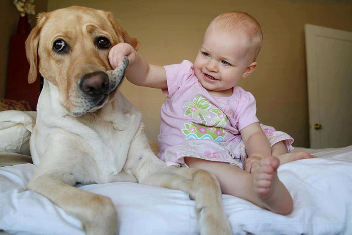 cute-big-dogs-and-babies-32.jpg
