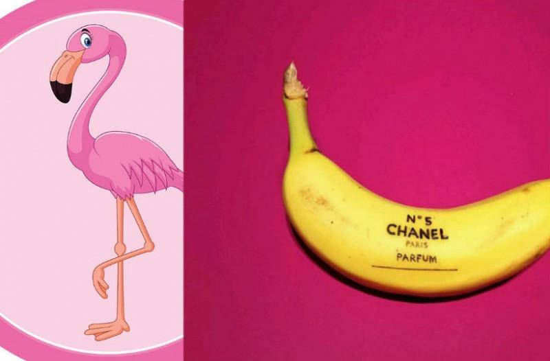 Τα ροζ φλαμίγκο φεύγουν… και έρχονται οιμπανάνες