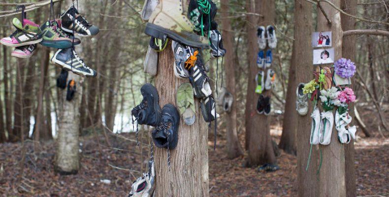 Ένα μυστηριώδες δάσος γεμάτο…παπούτσια