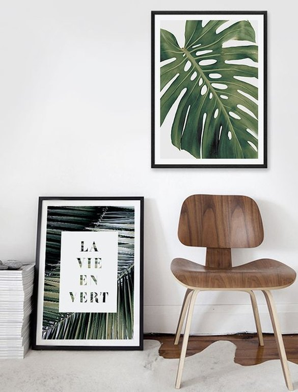framed-plants-2.jpg