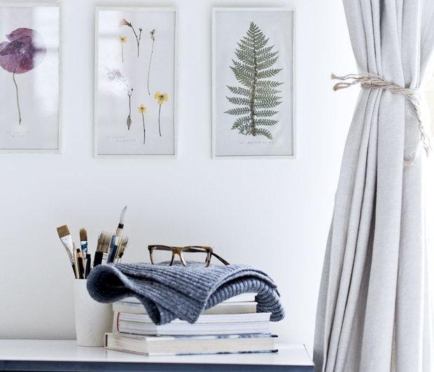 framed-plants-4.jpg