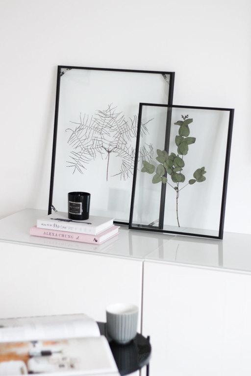 framed-plants-5.jpg
