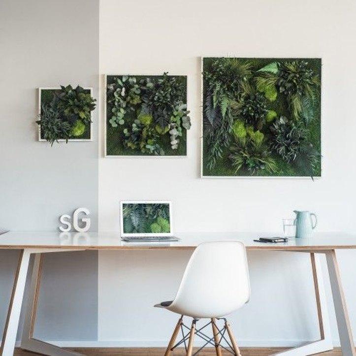 framed-plants-6.jpg