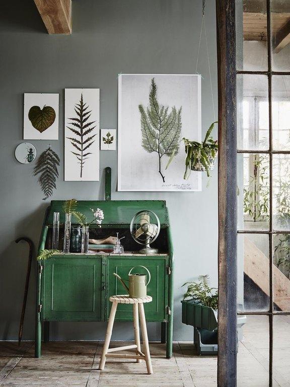 framed-plants-7.jpg