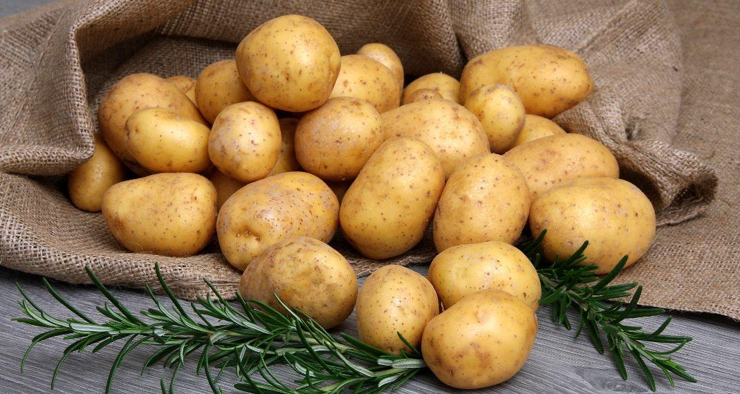 Ο λόγος που οι πατάτες της Νάξου είναι οι πιο διάσημες στηνΕλλάδα