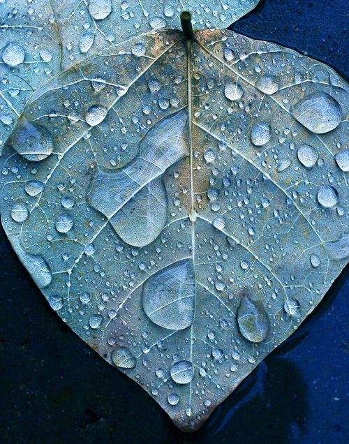 Ο καιρός το Σαββατοκύριακο: Βροχές στα βόρεια, μίνι καύσωνας στανότια!