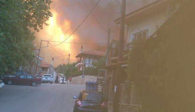 Σε εξέλιξη μεγάλη φωτιά σε παρθένο δάσος στη Δίρφη τηςΕύβοιας