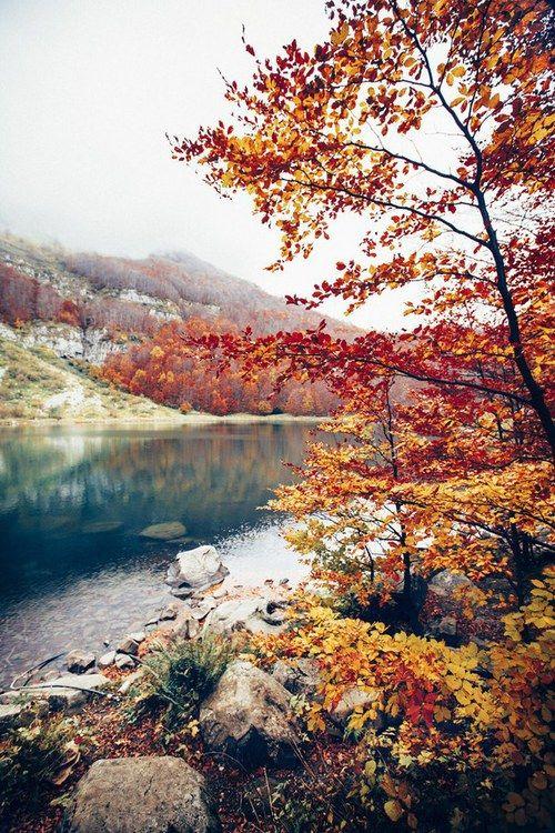 Καταπληκτικές Φθινοπωρινές φωτογραφίες!