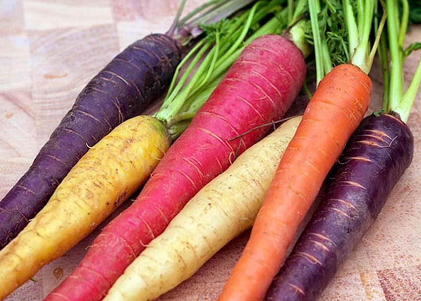 Τι χρώμα είχε το καρότο, πριν γίνειπορτοκαλί;