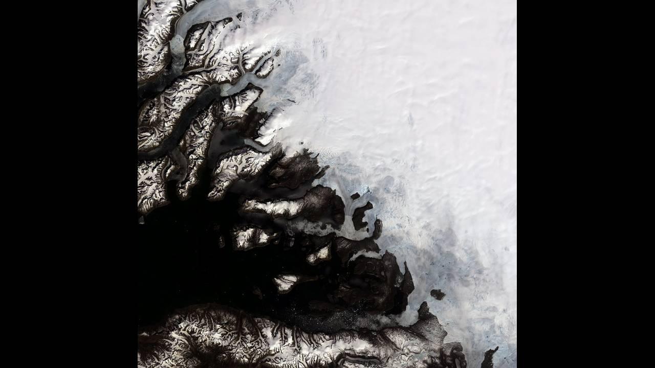 Δραματική προειδοποίηση από τη WWF: Αυτή είναι η τελευταία γενιά που μπορεί να σώσει τονπλανήτη