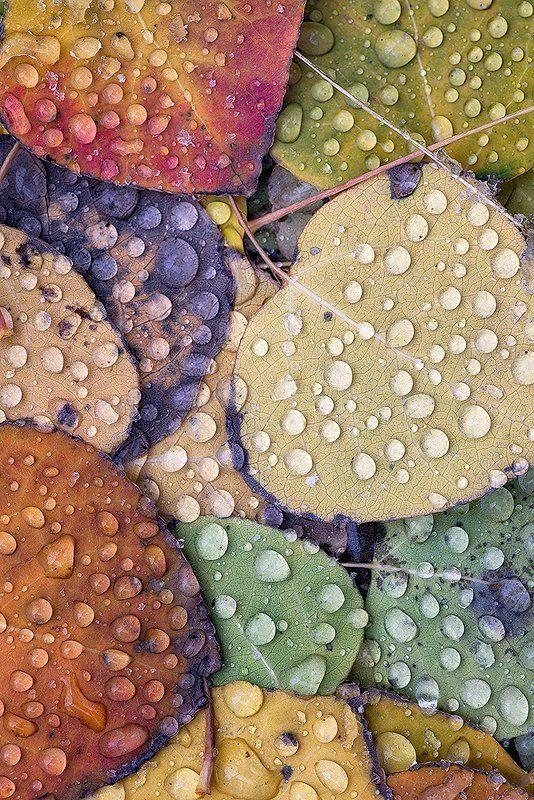 Καιρός: Ερχονται βροχές και σποραδικές καταιγίδες – Αναλυτικά η πρόγνωση τηςΕΜΥ