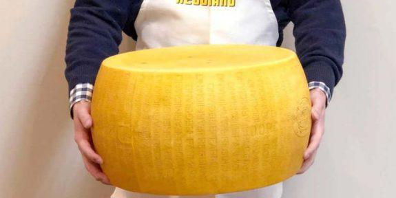 Αυτό το τεράστιο κεφάλι τυρί ζυγίζει 32 κιλά και πωλείται για$900!