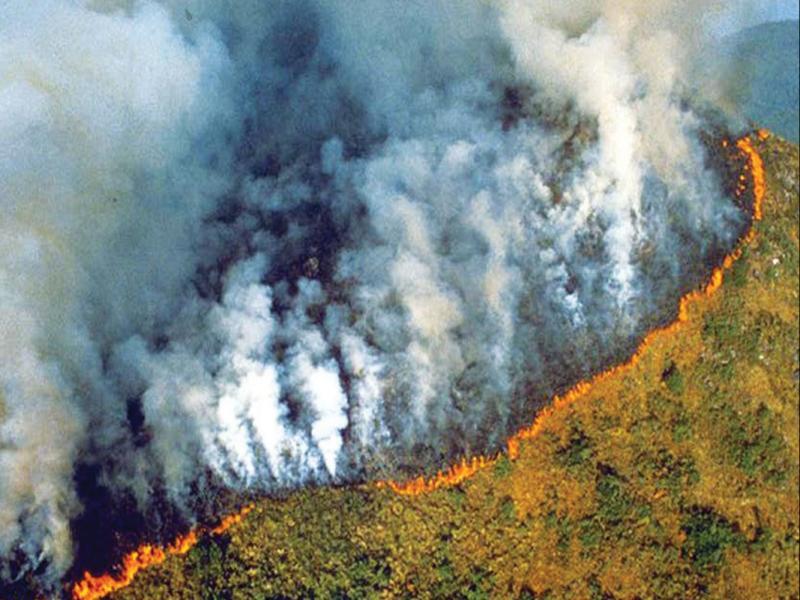 Σοκάρουν οι φωτογραφίες απ' τον Αμαζόνιο πουκαίγεται