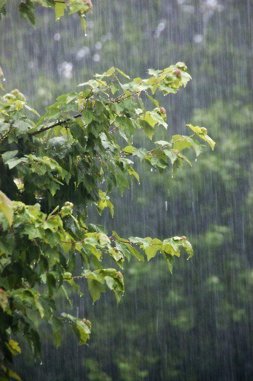 Κυριακή με συννεφιά, βροχές καικαταιγίδες