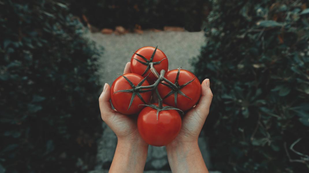 Πού πρέπει να βάζεις τις ντομάτες ανάλογα με το πόσο ώριμεςείναι