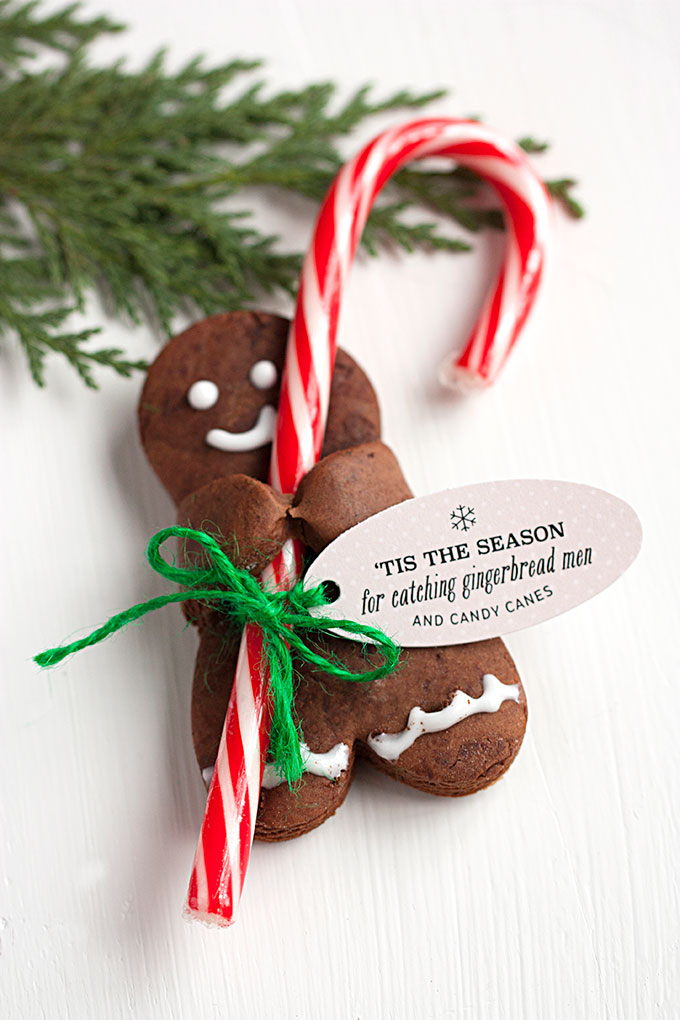 Chocolate Gingerbread Men With CandyCanes