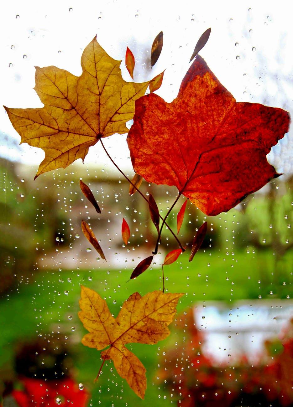 Καιρός Πέμπτη: Βροχές και καταιγίδες και σήμερα – Πού θα εκδηλωθούν έντονα καιρικάφαινόμενα