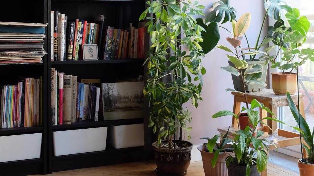 H βιβλιοθήκη – Ετσι διακοσμείται τώρα στα μοντέρναδιαμερίσματα