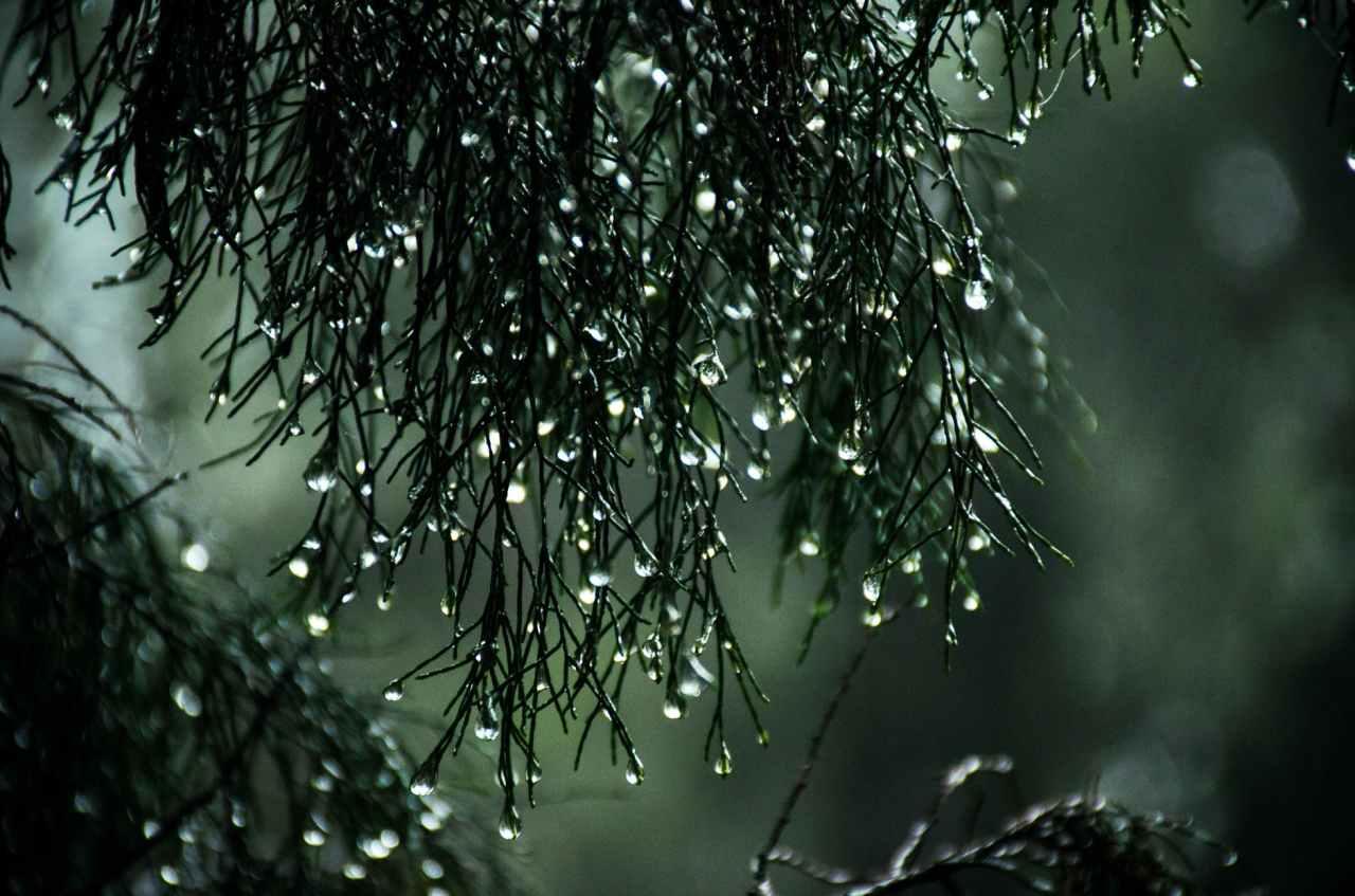 Καιρός αύριο: Έρχονται βροχές και καταιγίδες – Πού θα χτυπήσει ηκακοκαιρία