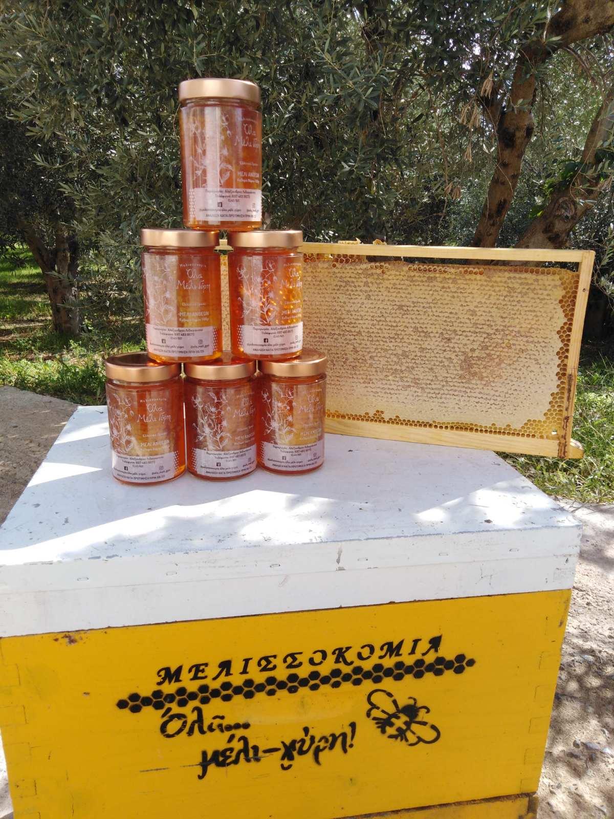 Μελισσοκομία – Όλα ΜέλιΓύρη