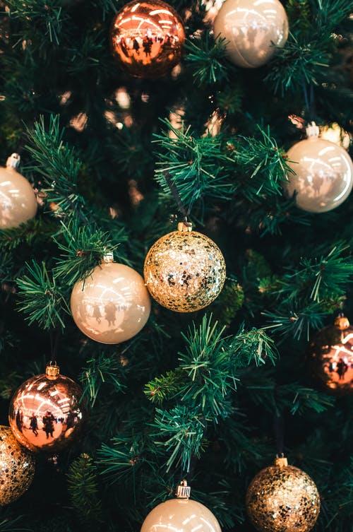 Βρώσιμα χριστουγεννιάτικα στολίδια για το δέντροσου