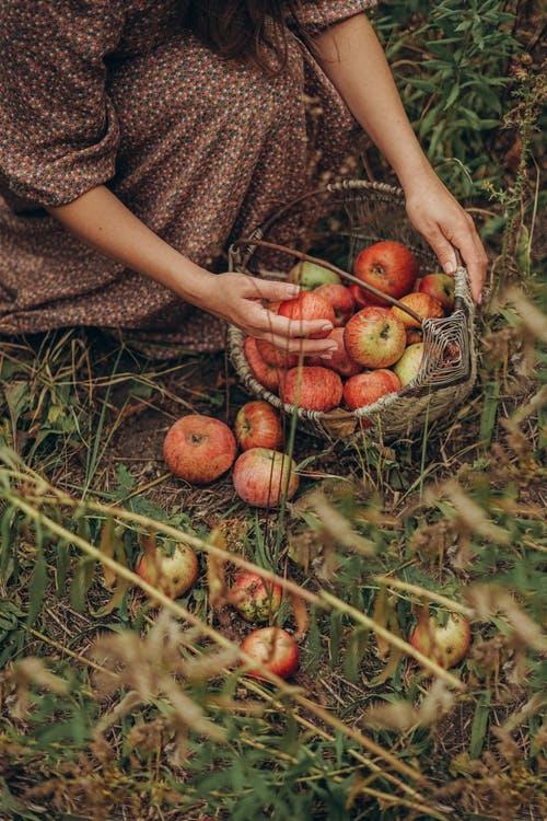 Μήλο και κανέλα – ένας γευστικά τέλειος και ευεργετικά απογειωτικόςσυνδυασμός